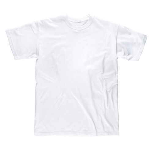 Camiseta Workteam S6601